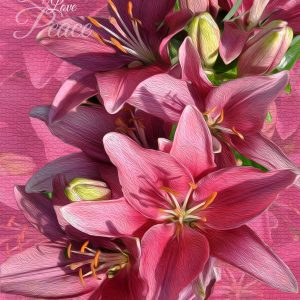 Pink Lilies Peace, Love, Happiness Art